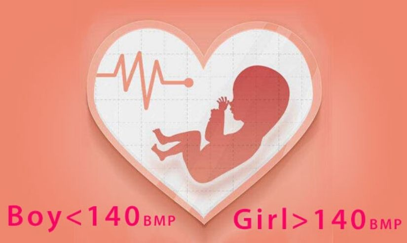 Calculating The Baby's Heart Rate